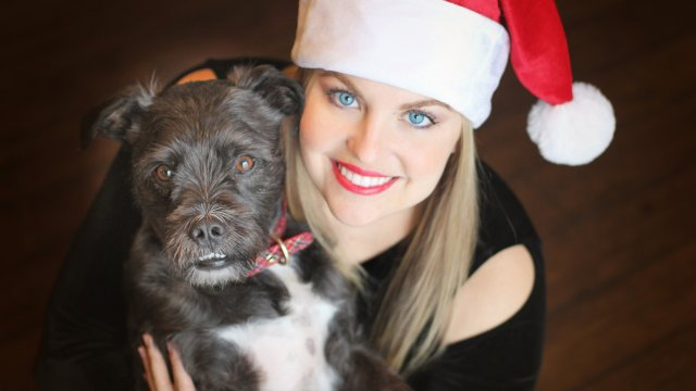 Have a Safe Holiday Season with your Pet