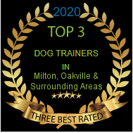 Best Dog trainers in Milton